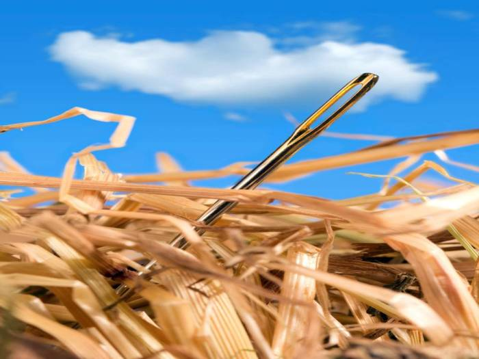 Problem solving - needle in the haystack Pic. Credit: Alcom.be